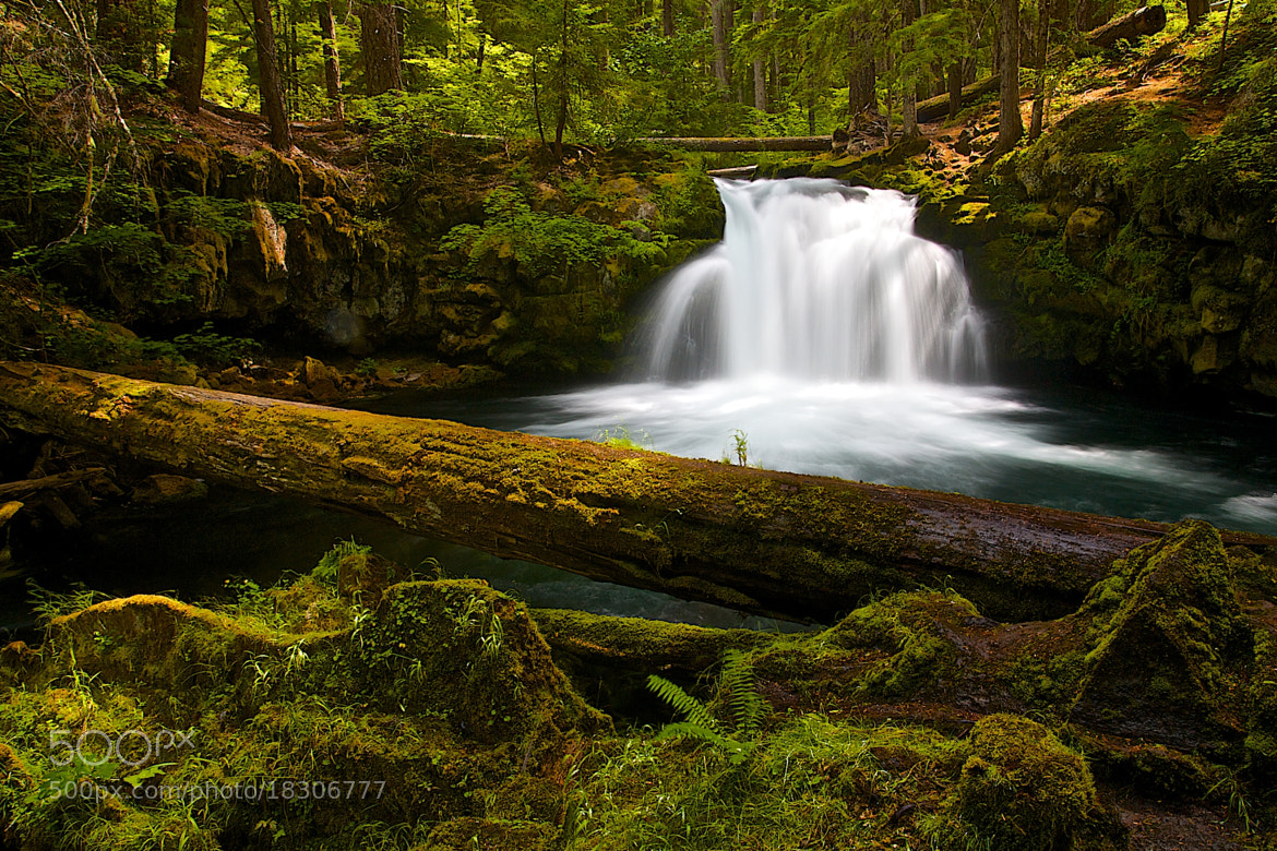 Photograph White Horse Falls by Todd Olthoff on 500px
