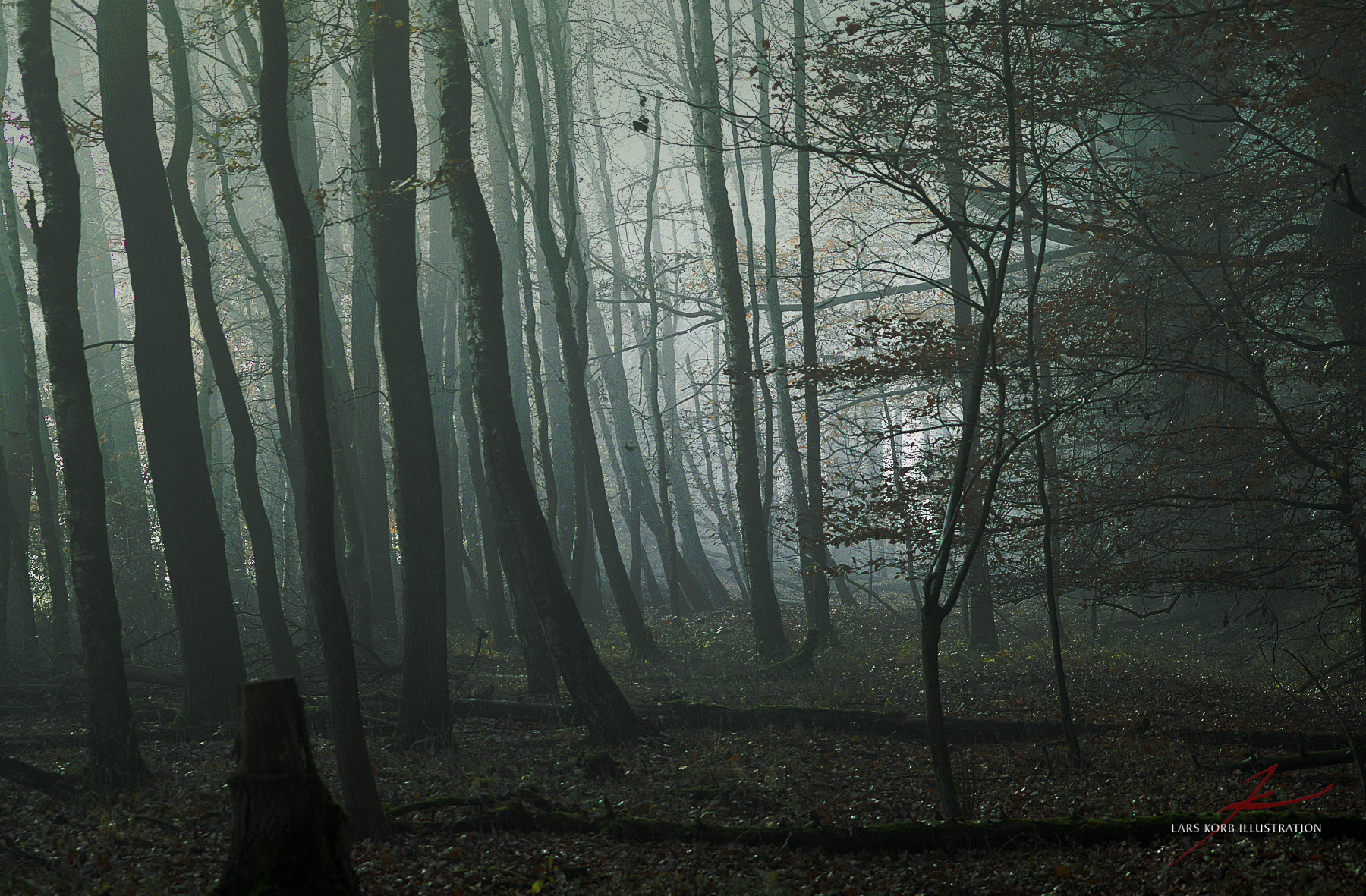 Photograph Witch Forest 2 by Lars Korb on 500px