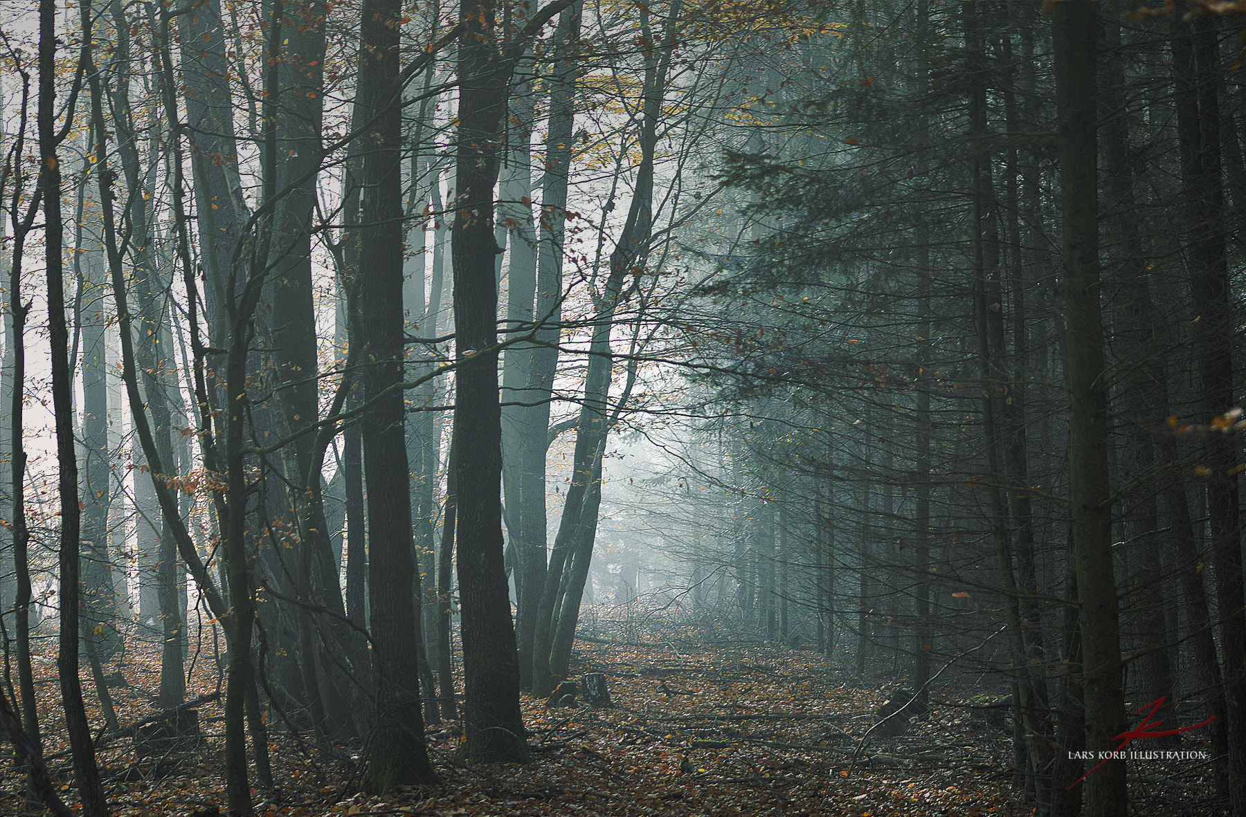 Photograph Witch Forest 3 by Lars Korb on 500px