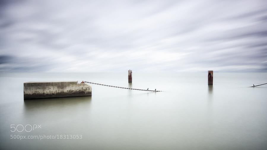 Photograph no bridge! by Pedro Damásio on 500px