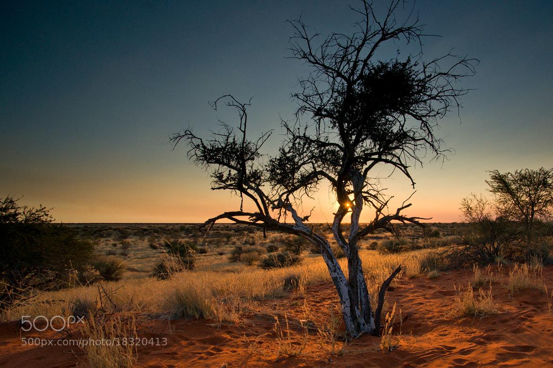 Photograph Mariental-Namibia by Kurz Christian on 500px