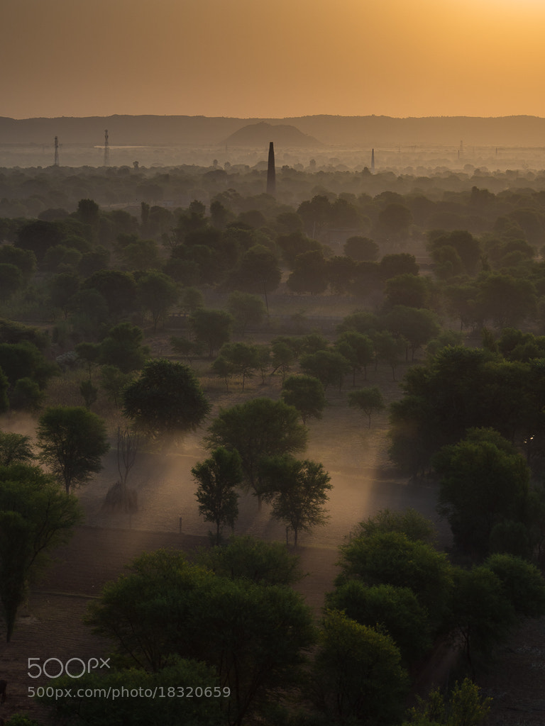 Photograph Country Mist, Rajasthan Dawn by Keith Muir on 500px