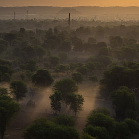 Country Mist, Rajasthan Dawn