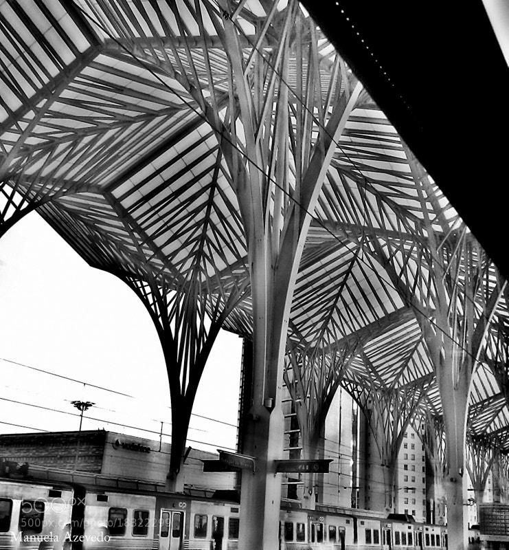 Photograph Oriente Station by Manuela Azevedo on 500px