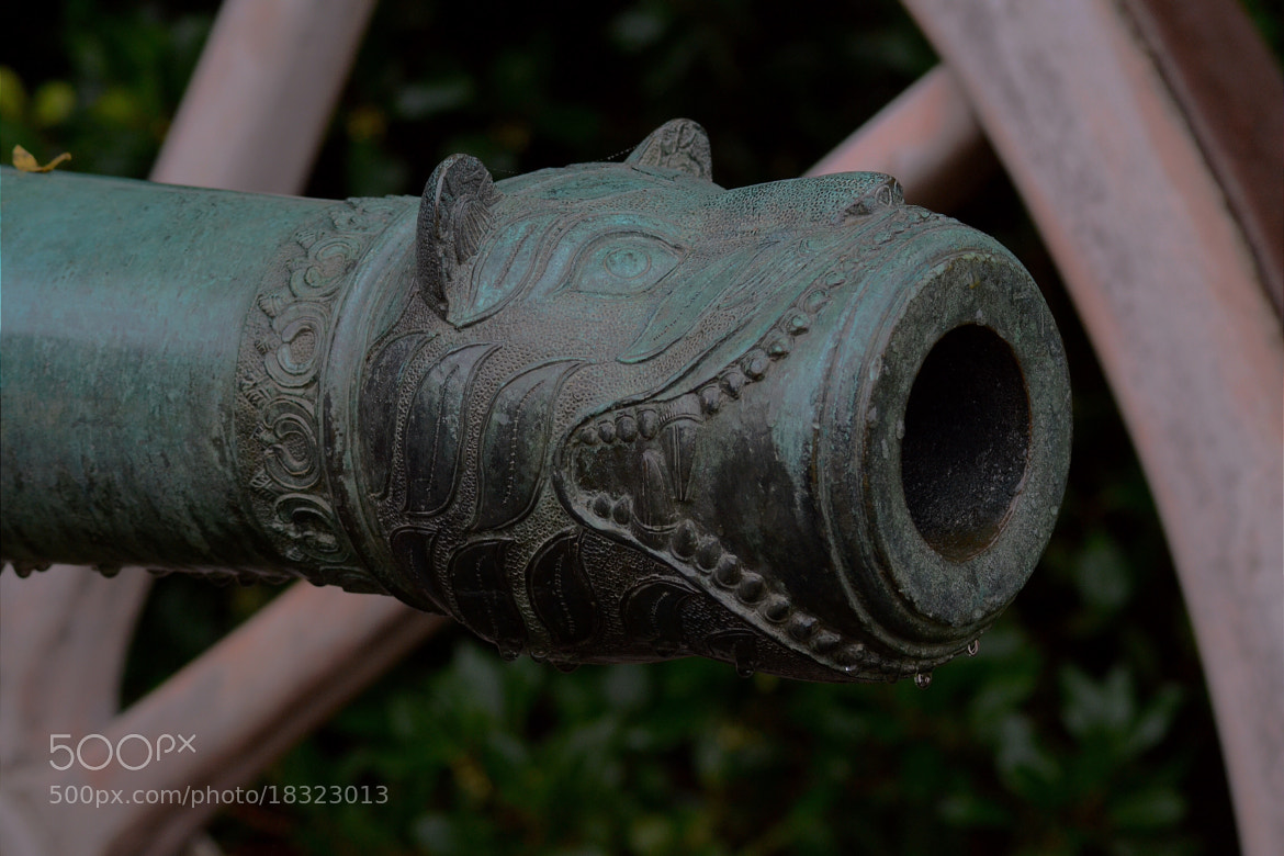 Photograph Cannon by Mark Bagstaff on 500px