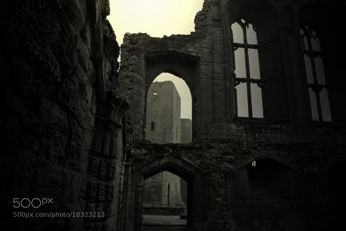 Photograph Kenilworth castle by Mark Bagstaff on 500px