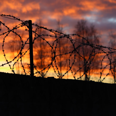 barbed wire on the, Canon EOS 600D, Canon EF 135mm f/2.8 Soft