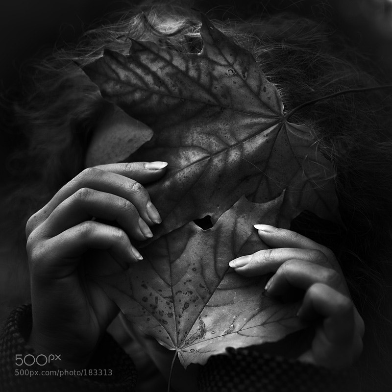 Photograph 2 leafs by Kirill Vorontsov on 500px