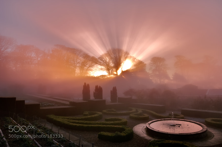 Photograph Sunrise on a cold foggy morning by Keith Foster on 500px