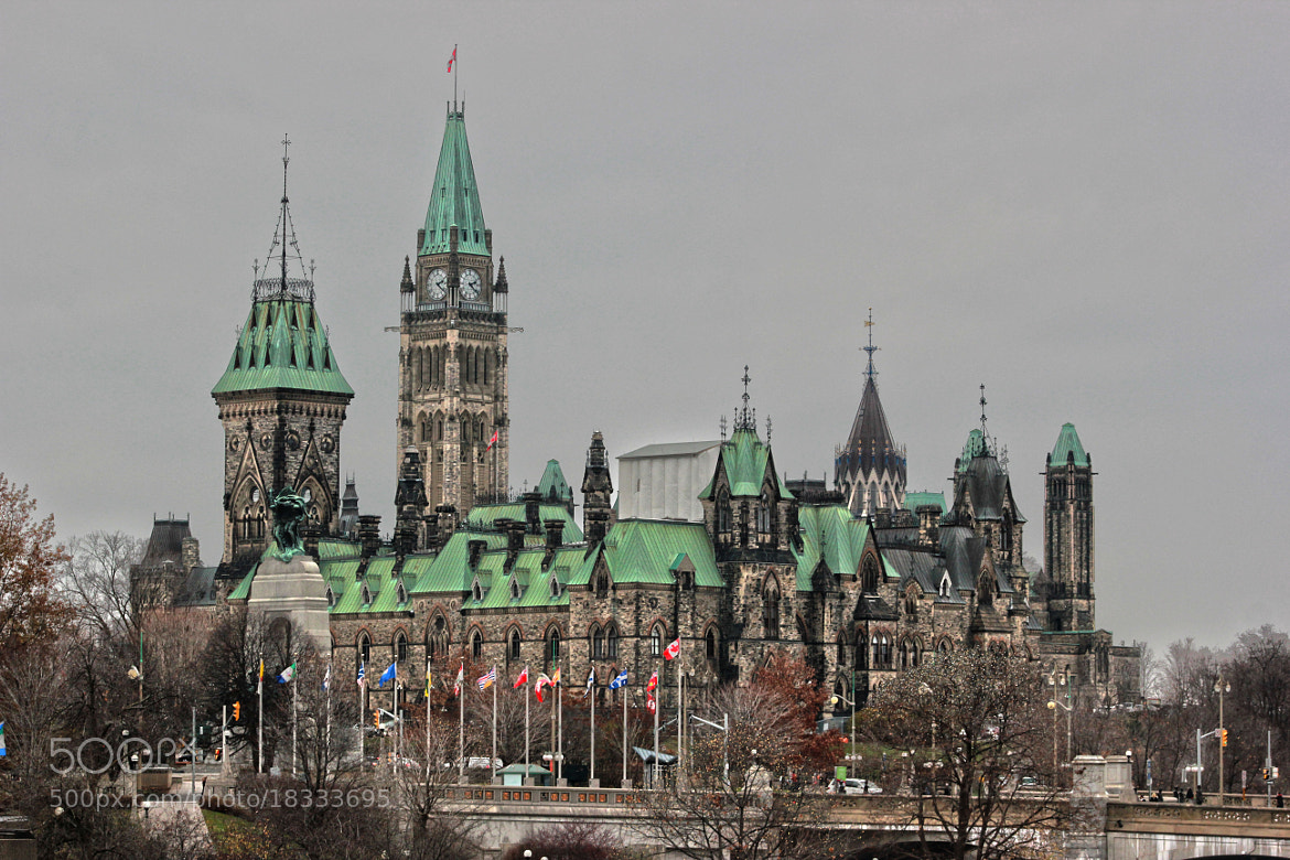 Photograph Backside of the Parliament by Sarah Zoubeidi on 500px