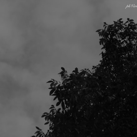 The sky in black, Canon POWERSHOT SX500 IS