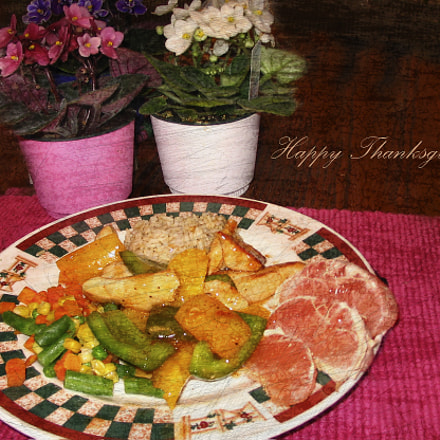Happy Thanksgiving!, Canon POWERSHOT A75