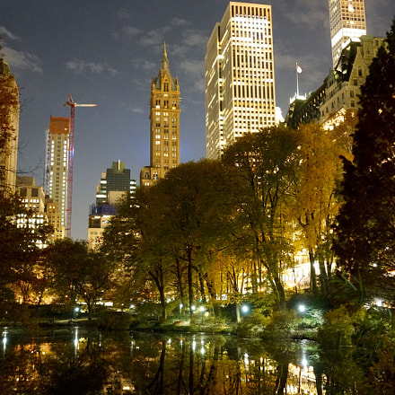 Central Park, Sony DSC-RX1RM2, Sony 35mm F2.0