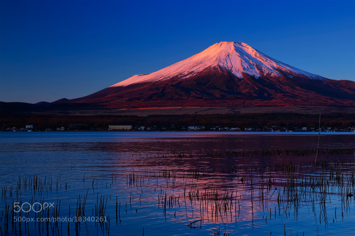 Photograph Mt.Fuji in the morning by MIYAMOTO Y on 500px