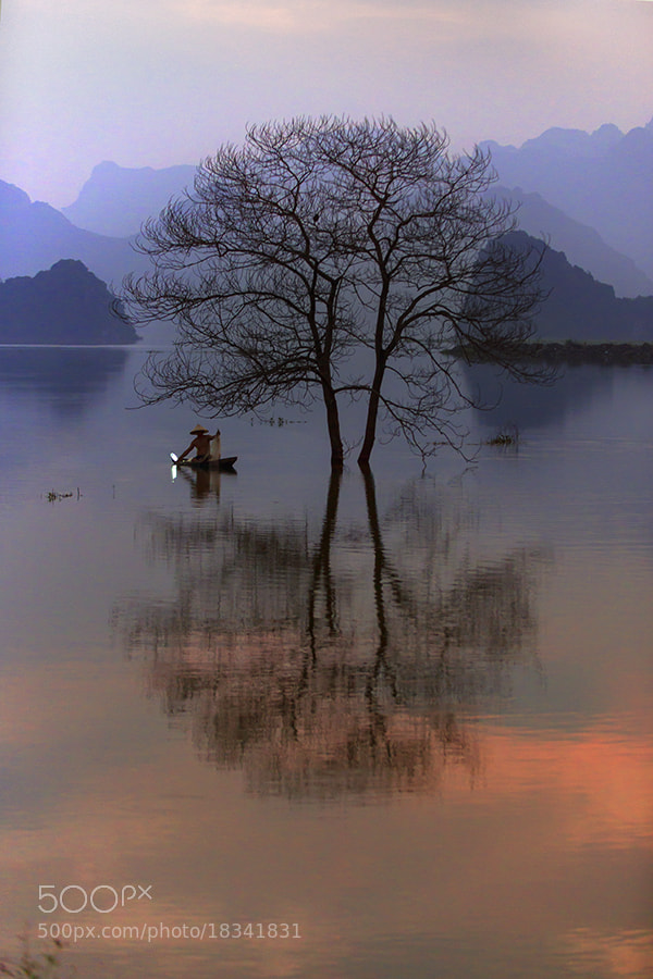 Photograph Sunset by Hai Thinh on 500px