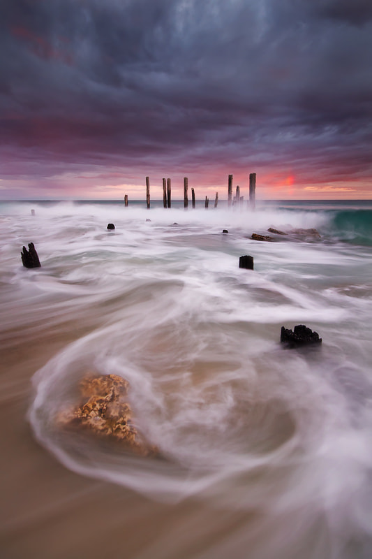 Photograph Dragon in the Sea by Dylan Toh  & Marianne Lim on 500px