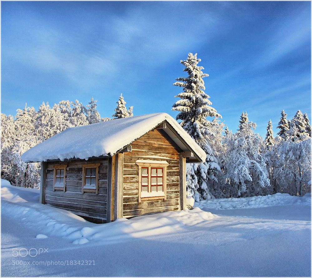 Photograph Finnish winter ... by Valtteri Mulkahainen on 500px