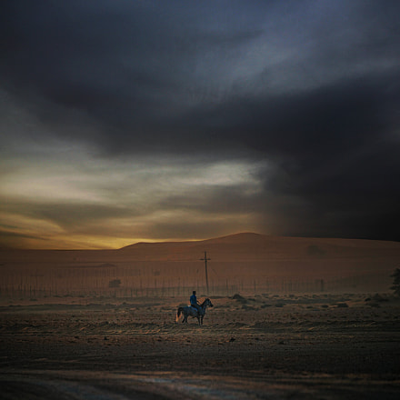 horse rider, Canon EOS-1D C, Canon EF 100-400mm f/4.5-5.6L IS