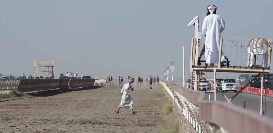 Omani Crossing During a Camel Race