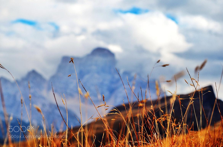 Photograph Mountain by Tiziano Rigo on 500px