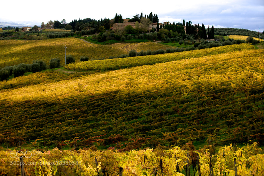 Photograph zona di chianti by Eric Dimarcantonio on 500px
