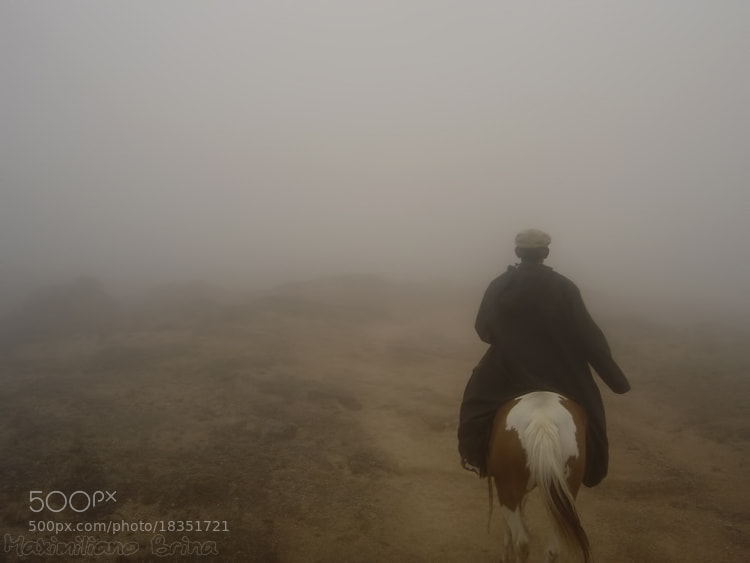 Photograph  I love the smell of a wet horse in the morning by Maximiliano Brina on 500px