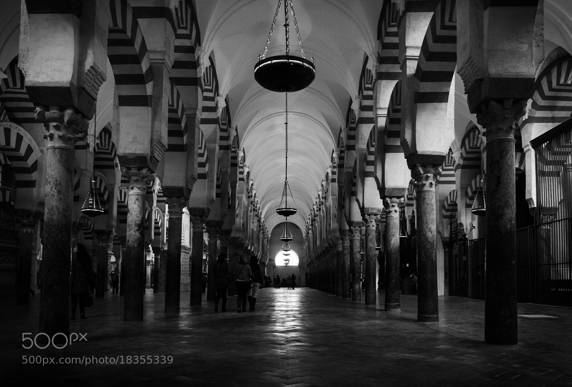 Photograph Córdoba's Mosque by Enrico Maria Crisostomo on 500px