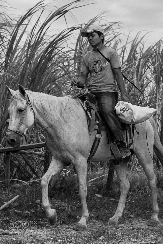 Photograph Zafra by Eduardo Vergara Muñoz on 500px