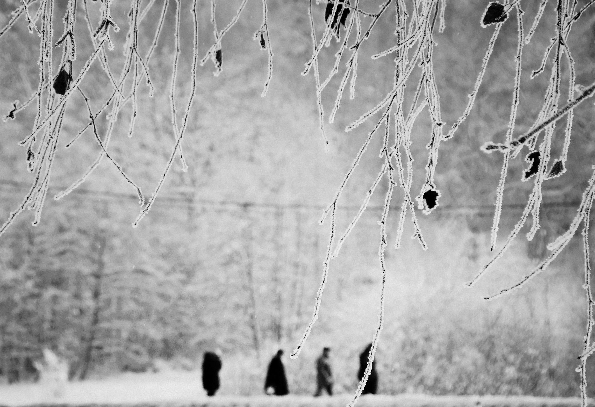 Photograph Figures In The Distance  by Mojca Savicki on 500px