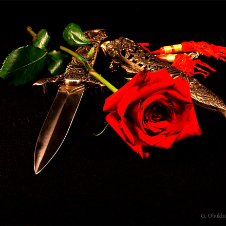 Love and hate, Sony DSC-H5