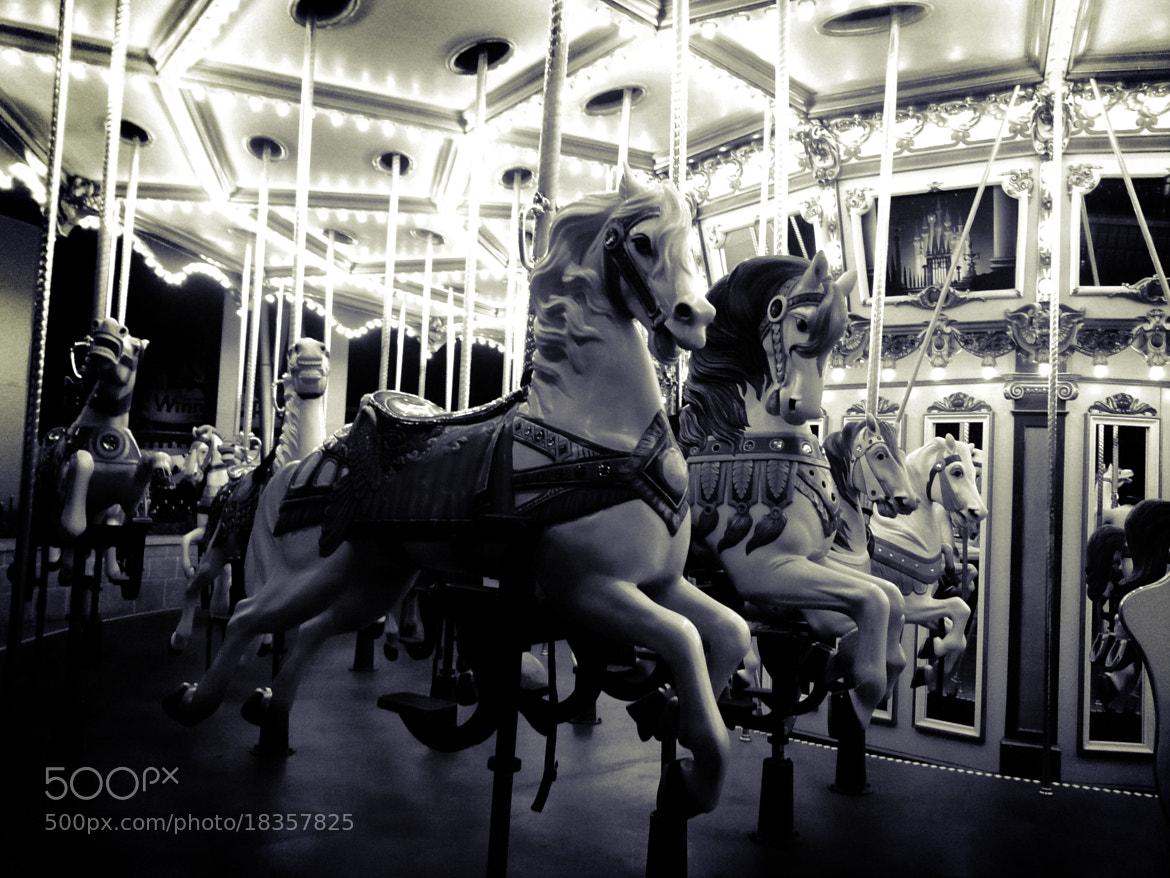 Photograph Merry-Go-Around by Dorcas H. on 500px