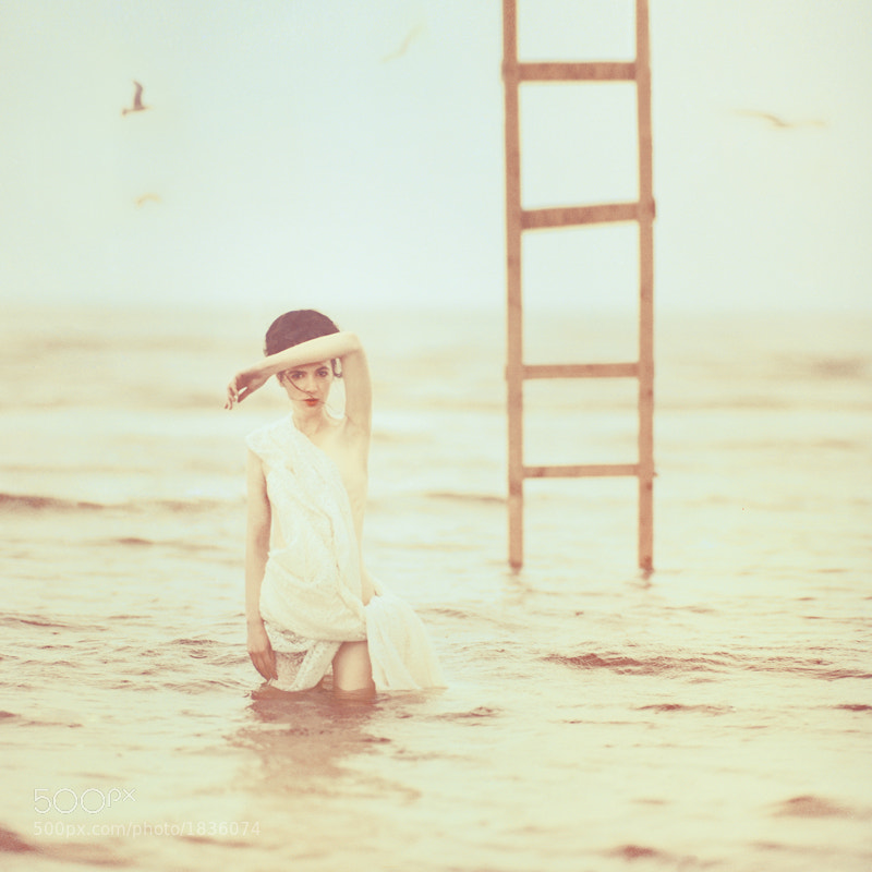 Photograph muse by oprisco  on 500px
