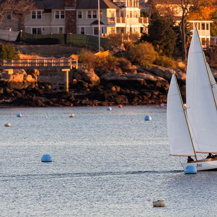 Sailing in the Harbor, Canon EOS 5D MARK III, Canon EF 600mm f/4L IS
