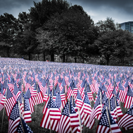 Memorial Day flags, Sony DSLR-A580, Tamron SP AF 17-35mm F2.8-4 Di LD Aspherical IF