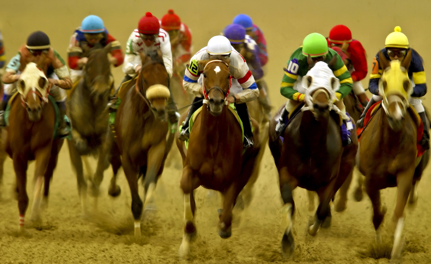 Photograph Kentucky Derby by Lucas  Gilman on 500px