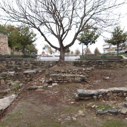 Ruins and Trees, Canon IXUS 300 HS