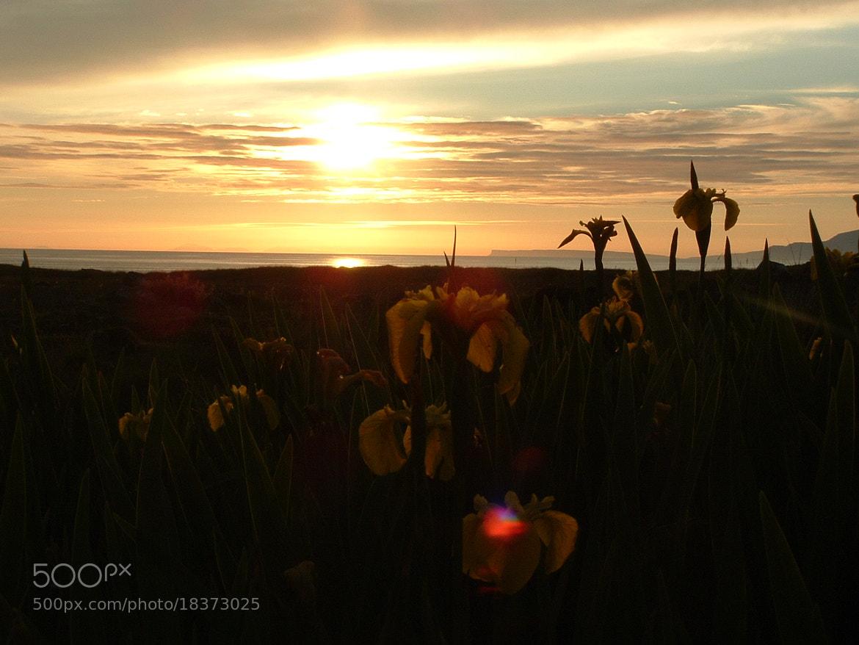 Photograph Sunset over Canna by James  Mcfadzean on 500px