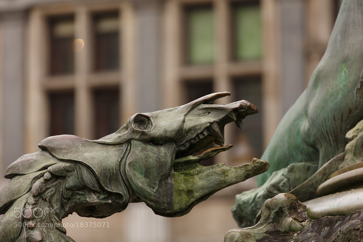Photograph Brabo statue, Antwerp by Alfred Haider on 500px