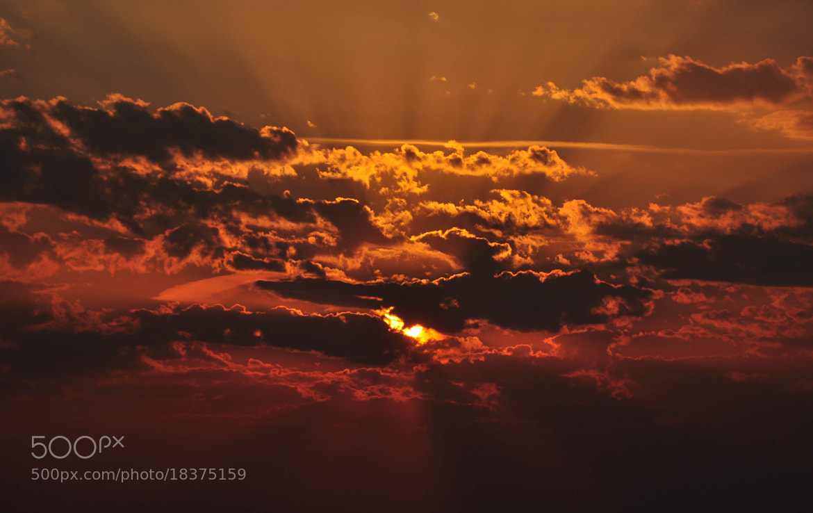 Photograph Sunset in Paris by VisionPhotographer  on 500px