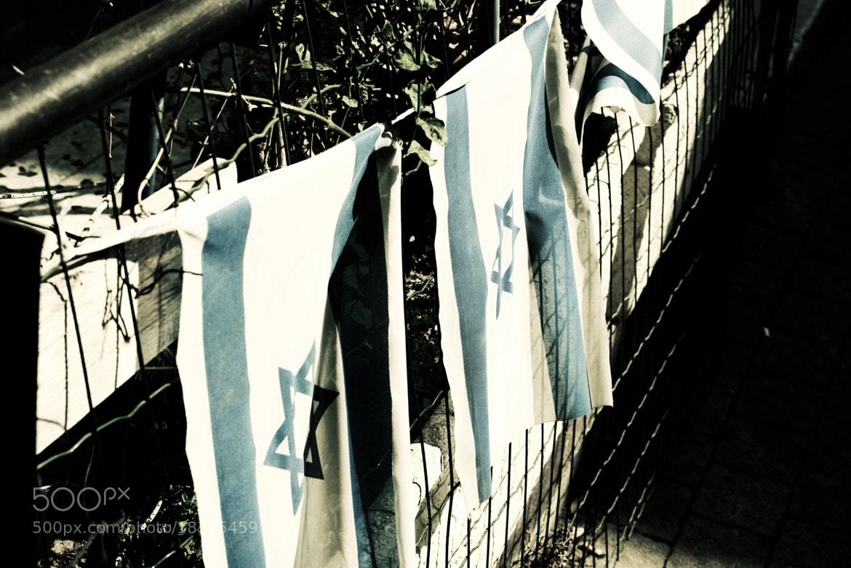 Photograph Flags Line the Path by Richard Harrington on 500px