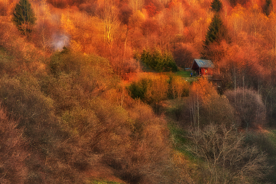 Photograph Magic place by Andrea Jancova on 500px