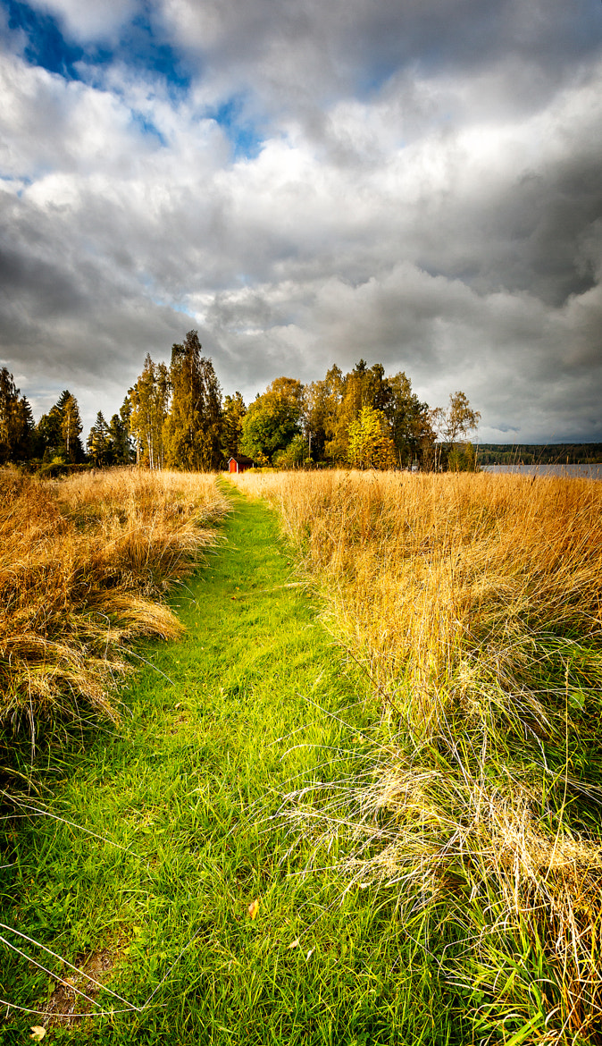 Photograph The way by Adam Vikman on 500px