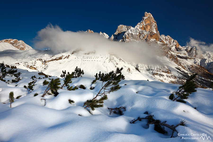 Photograph White Cover by Gianluca Cantelli on 500px