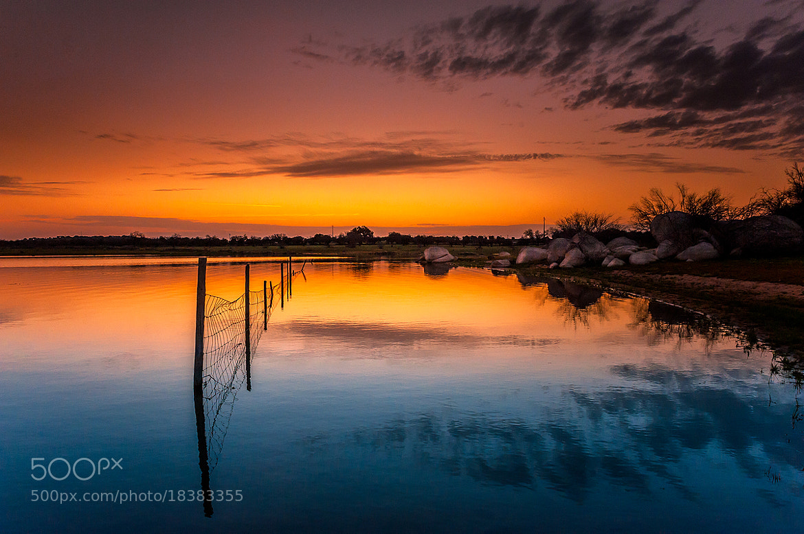 Photograph The fence by Nuno Trindade on 500px