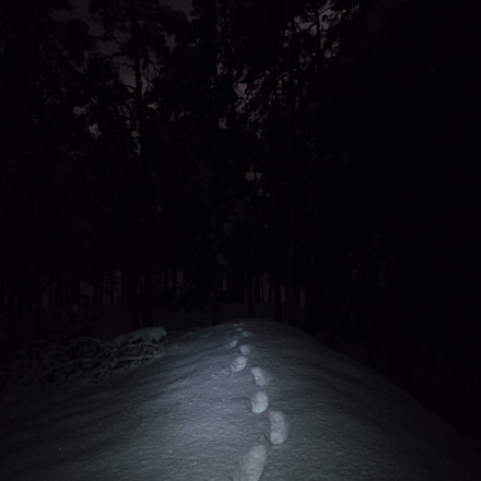Footsteps in the snow, Canon POWERSHOT G5 X