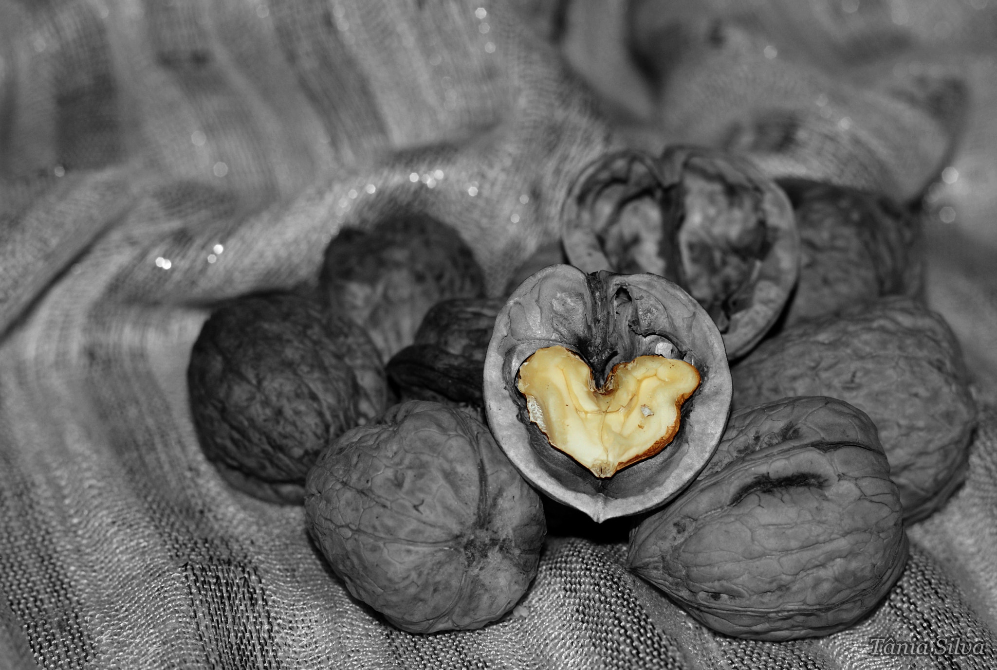 Photograph Heart of Walnut by Tânia S Silva on 500px