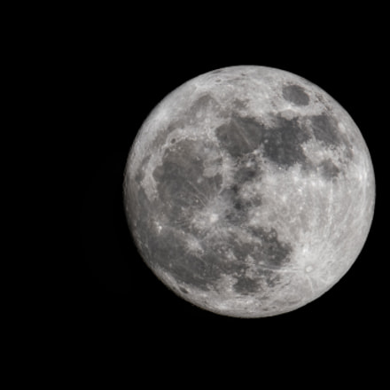 Night before the Supermoon, Nikon D500, AF-S VR Nikkor 600mm f/4G ED