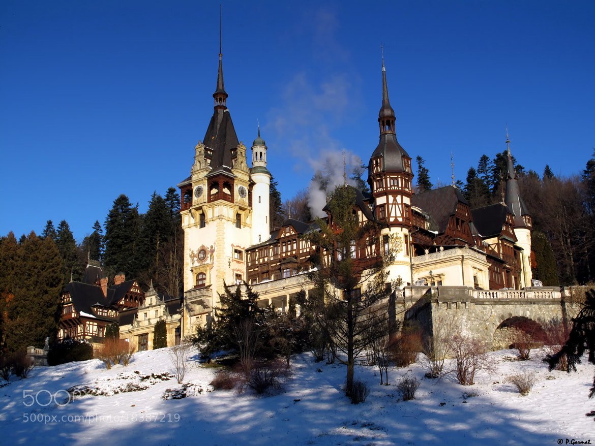 Photograph Romania Sinaia Peles Castle by Garmatis Pantelis on 500px