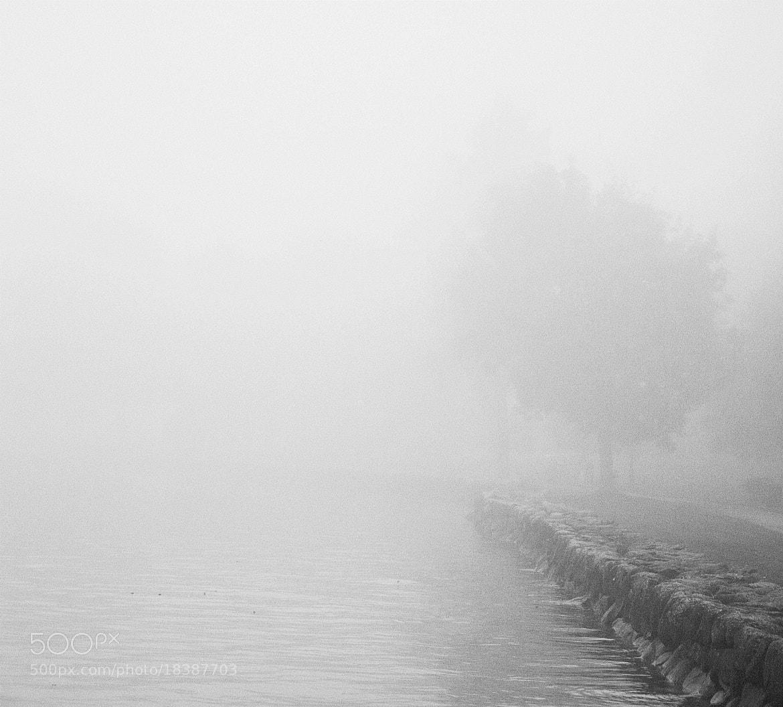 Photograph fog by virginijus baltmiskis on 500px