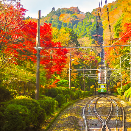 Colored leaves and Mt. Takao cable car